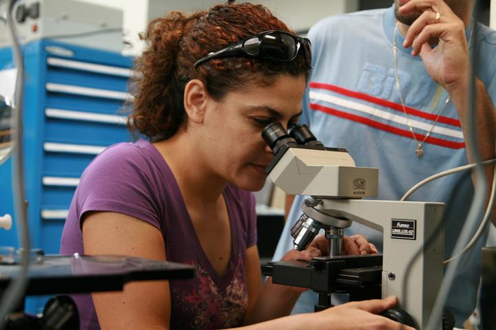 Examining samples
